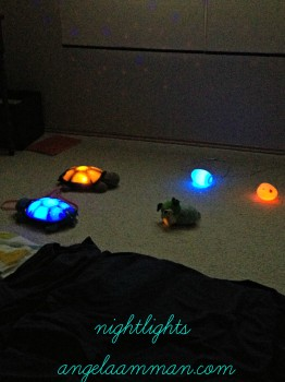 Twilight Turtles